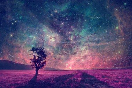 Photo pour Paysage extraterrestre rouge avec seule silhouette d'arbre dans le champ pourpre éléments de cette image sont fournis par la NASA - image libre de droit