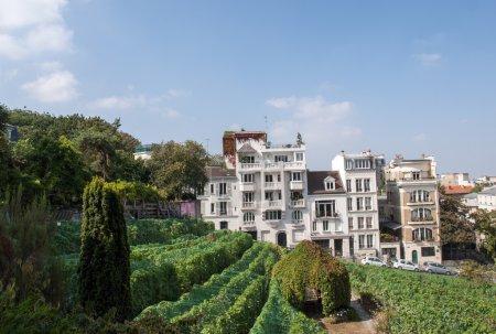 Paris gardens dedicated to Auguste