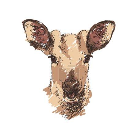jeune tête de cerf