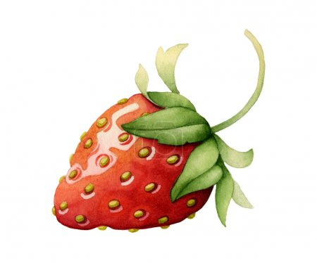 Foto de Strawberry made with watercolors on white background - Imagen libre de derechos