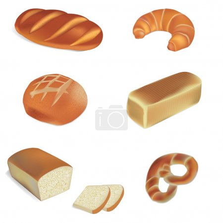 bakery and bread vector illustrations