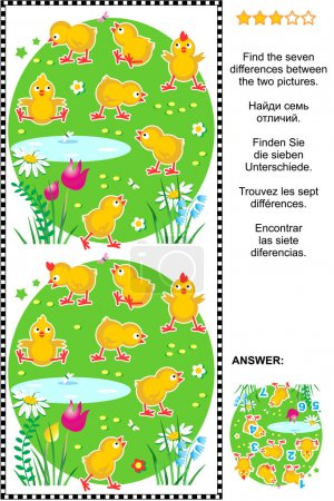 Find the differences visual puzzle - chicks