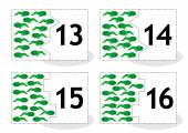Learn counting puzzle cards newts and tadpoles numbers 13-16