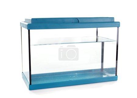 Photo pour Aquarium bleu devant fond blanc - image libre de droit