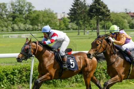 Wroclaw, Poland, May 10, 2015: Finish the race for horses only 3 year old group II in Wroclaw.