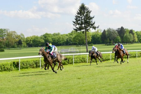 Wroclaw, Poland, May 10, 2015: Finish the race for horses only 3 year old group III in Wroclaw.