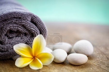 White frangipani on towel in the spa