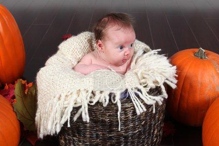 Newborn baby girl posing for camera