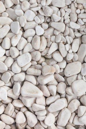 Photo pour Fond de galets blancs pour la conception - image libre de droit