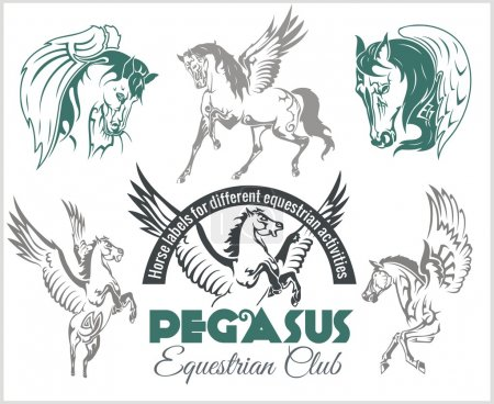 Vector set of pegasus and horses labels for differ...