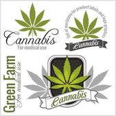 Marijuana - cannabis. For medical use. Vector set.