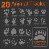20 Animals Tracks on dark background - vector set - vector stock illustration