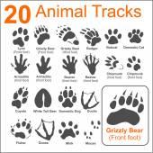 20 Animals Tracks on white background- vector set - vector stock illustration