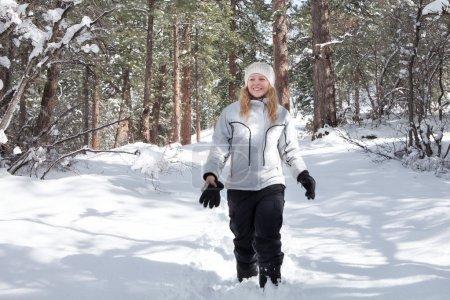 winter walk winter walk