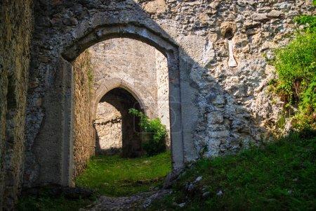 Medival castle entry gate