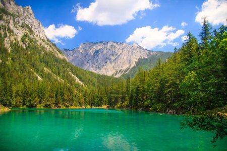 Gruner ver lago