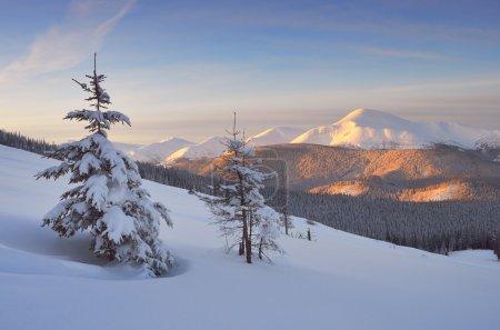 Photo pour Aube dans les montagnes. Paysage hivernal avec neige fraîche - image libre de droit