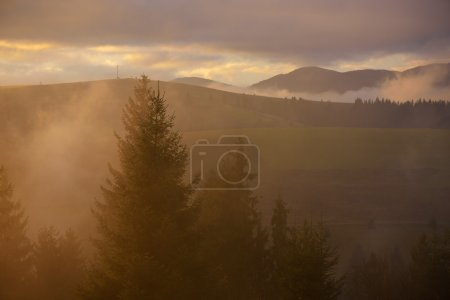 Photo pour Paysage matinal. Beau soleil dans les montagnes. Brume colorée. Beauté dans la nature - image libre de droit