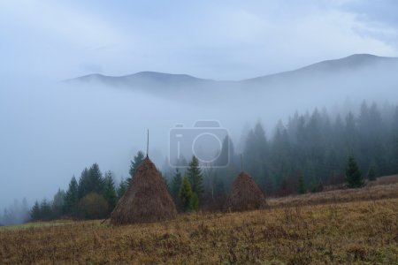 Haystacks en un pueblo de montaña