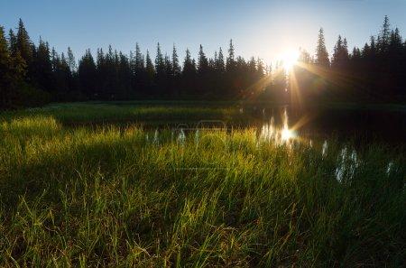 Photo pour Lac dans la forêt de montagne. Lumière du soleil du matin - image libre de droit