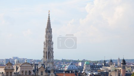 Brussels roofs