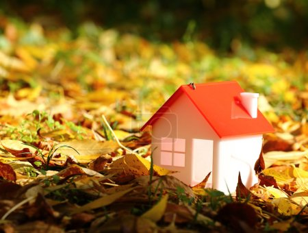 Photo for Model house amid autumn leaves - Royalty Free Image