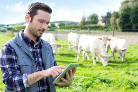 Young attractive farmer using tablet in a field