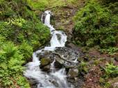Waterfall in green forest with motion blur effect
