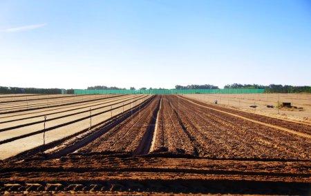 Photo pour Terres arables avec sillons aspirant à l'horizon - image libre de droit