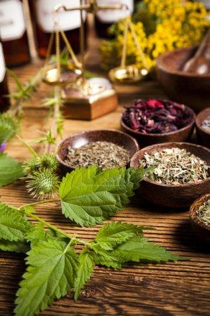 Foto de Medicina herbal sobre mesa de madera - Imagen libre de derechos