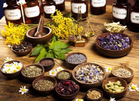 Photo pour Flacons et herbes médicinales - image libre de droit