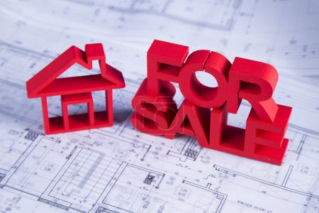 For sale House and achitectural drawings