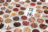 Yin a Yang Čínské byliny