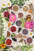 Léčivé léčivé byliny a květiny