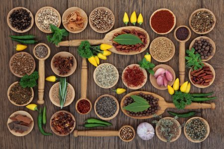 Photo for Chilli spice and herb ingredients in wooden bowls, spoons and loose over old oak background. - Royalty Free Image