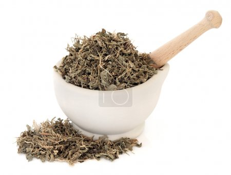 Gentian Leaf Herb
