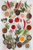 Abstraktní byliny a koření zázemí