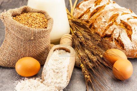 Wheat grains and flour