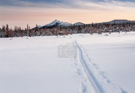 backcountry ski trails in Ural mountains