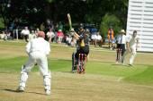 Kriketový zápas