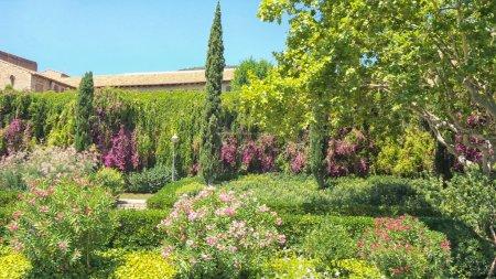 Garden in Barcelona
