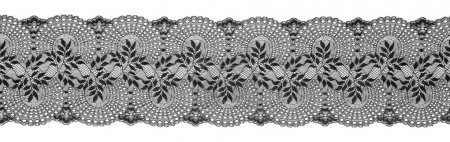 Embroidered Lace Trim Ribbon, Needlework Border, Embroidly Fabric Pattern, on White Background