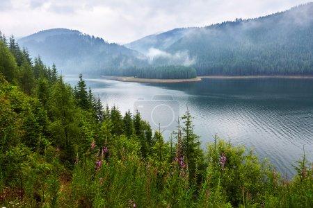 Photo pour Paysage avec lac Vidra dans les Carpates du Sud en Roumanie - image libre de droit