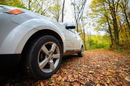 Photo pour Wide angle closeup of a white car on a road through forest in the autumn - image libre de droit