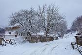 Zimní krajina na venkově