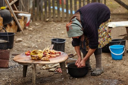 Senior rural woman preparing chicken outdoor