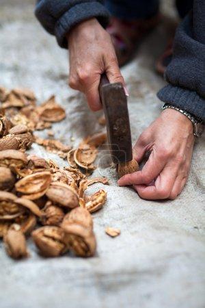 Woman crushing walnuts outdoor