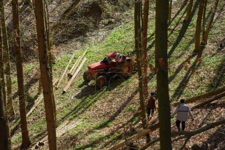 Photo pour Agriculteurs âgés utilisant un tracteur forestier pour abattre des arbres coupés dans une forêt - image libre de droit