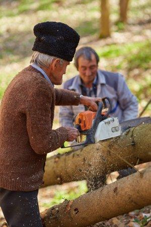 Photo pour Fermiers seniors bûcherons abattage d'arbres pour le bois ou le bois de chauffage - image libre de droit