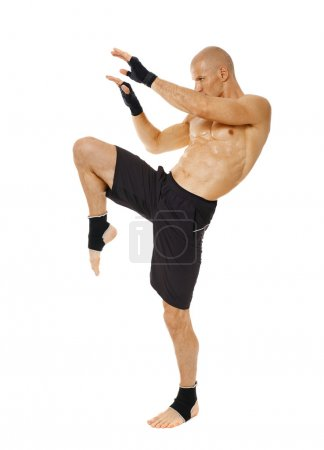 Thai box fighter kicking with the knee